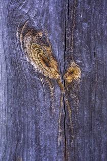 altes Brett - old-plank von Werner Schulteis