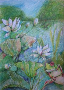 HUGO THE RED-EYED FROG by Brigitte Hintner
