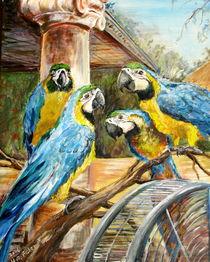 Papageienversammlung von Helga Anders-Faber