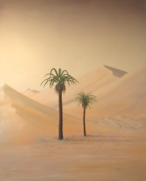 Palmen by RAINER PFANNKUCH