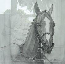 Das Rennpferd von Elfriede Oesterle
