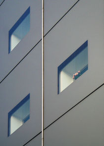 Window by Amirali Sadeghi