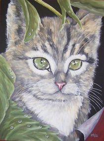 Katzenkind von Kai-Iris Martin