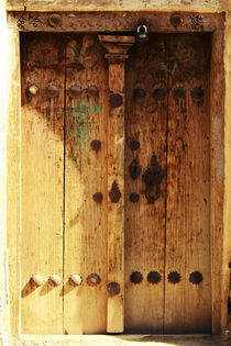Old door by Amirali Sadeghi