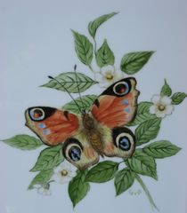 'Tagpfauenauge' von Giseltraud van Doeselar