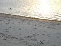 Strand von Kristin König-Salbreiter