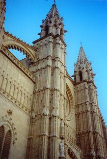 Mallorca Kathedrale La Seu in Palma de Mallorca by Alexander Hait