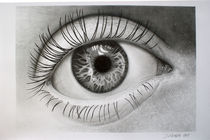 Auge von Dietrich Moravec
