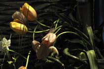 Tulpen im Landhausstil by Carmen Steiner