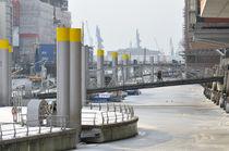 Hamburg Hafencity im Winter von Carmen Steiner