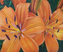 Tigerlilien von Peter Bahn