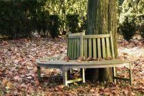 Herbstzeit by Andreas Herpens