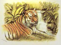 'Tiger im Dschungel - handgemalt ' by Marita Zacharias