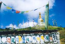 Stupa in Indien von Thomas Rathay