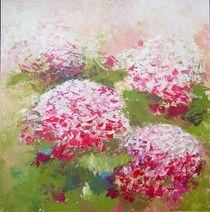 Hortensien im Licht von Anne L. Strunk