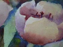 Tulpen  von Stefanie Ihlefeldt