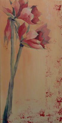 Amaryllis von Stefanie Ihlefeldt