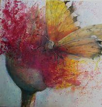 Schmetterling im Abflug von Stefanie Ihlefeldt