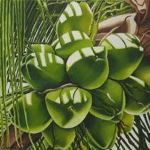Kokosnüsse in Bahia by Claudia Susan Ehrhard