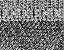 Quadratzahlen by Tolya Glaukos