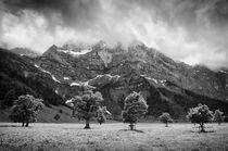 In der Eng by Stefan Eber