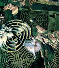 Tanz durch das Labyrinth von Yvonne Pfeifer