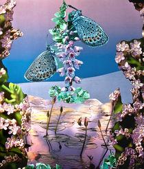 Beauty of Creation by Yvonne Pfeifer