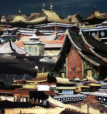 Asian Architecture von Yvonne Pfeifer