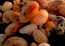 coastal pebbles by james smit