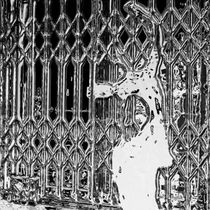 Die Frau hinter Gittern by Reiner Poser