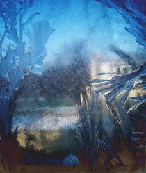 Eisblumenlandschaft by Reiner Poser