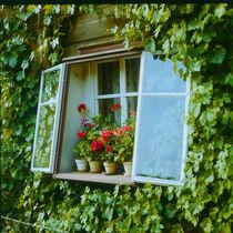 Fenster1 von M. Lehmann