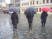 im Regen von M. Lehmann