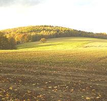1,Herbst in Ebersbach von M. Lehmann