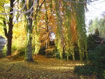 3.Herbst von M. Lehmann