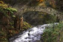 Märchenbrücke von Danny Elskamp