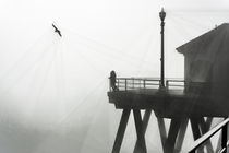 Huntington Beach Pier in Fog with a Seagull von Eye in Hand Gallery