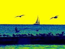 Yellow wind von Yvonne Müntener