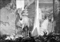 Das weiße Pferd  von Peter Heydeck