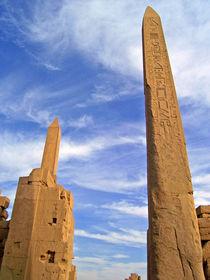 Karnaks Riesen von Saskia Berndt