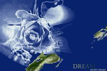 Dream Rosencreation von Martina Ute Rudolf