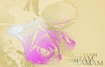 Rose of life, Blume der Liebe, Flower of love,dreamrose von Martina Ute Rudolf