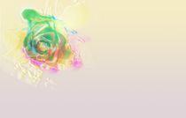 Rose of Power by Martina Ute Rudolf