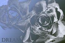 Grey is beautiful by Martina Ute Rudolf