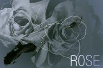 Rose Dreams - wedding flower by Martina Ute Rudolf