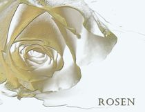 Golden Rose von Martina Ute Rudolf