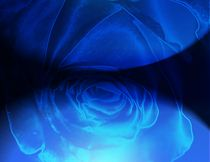 Ozeanblue Diamond Rose  von Martina Ute Rudolf