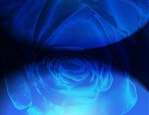 Ozeanblue Diamond Rose  by Martina Ute Rudolf