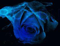 Magic Ocean Bue Heart von Martina Ute Rudolf