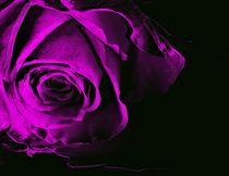 Black & Pink for better World by Martina Ute Rudolf